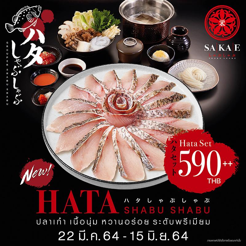เมนูใหม่! ฮาตะชาบู ชาบู/สุกี้ยากี้ญี่ปุ่น  ปลาเก๋าเนื้อนุ่ม ระดับพรีเมียมจาก Sakae